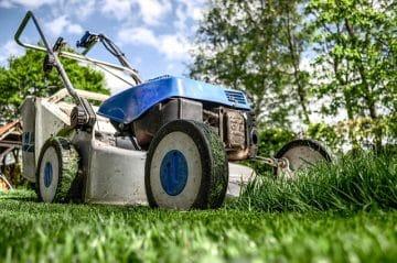 RUT-avdrag för trädgårdsskötsel